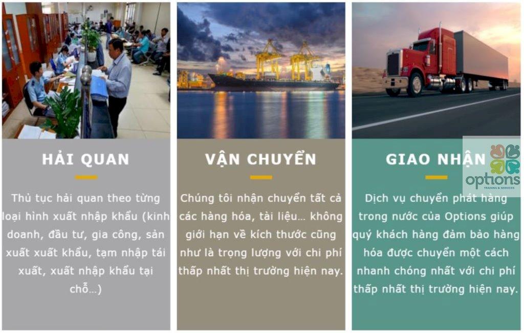 Công ty dịch vụ vận tải tại Bình Dương