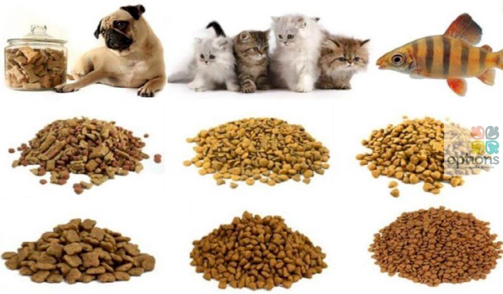 Thủ tục nhập khẩu thức ăn chăn nuôi vi sinh