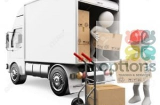 unloading-cargo-300x270